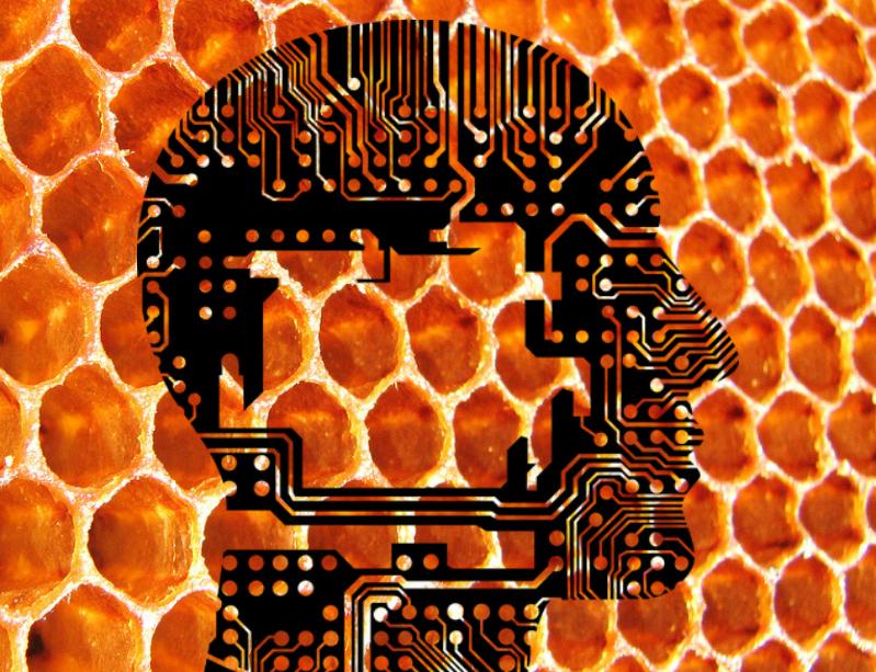 Got Honey Headaches? Try Decoy Documents